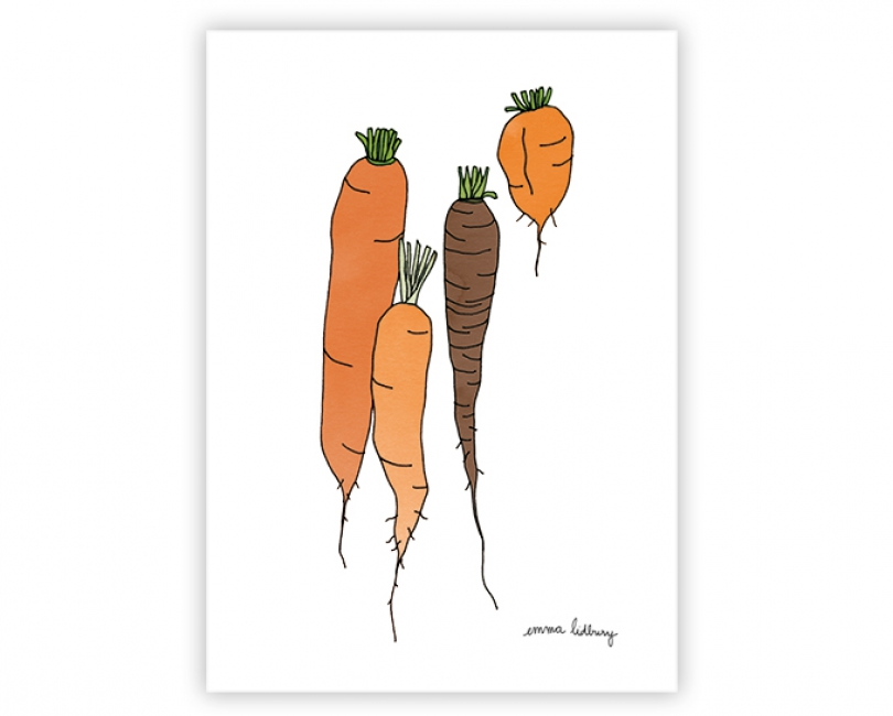 lacarteriedemma-lidbury-carte-Illustration-carottes-orange
