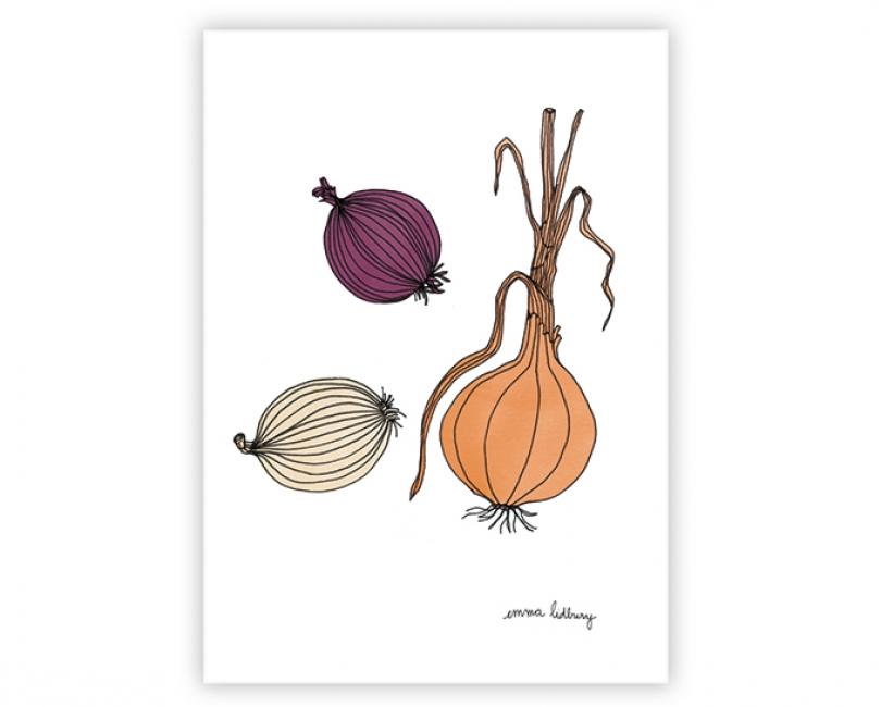 lacarteriedemma-lidbury-carte-Illustration-oignons